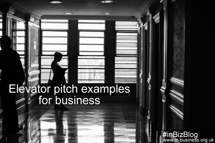 elevator pitch examples for business 30